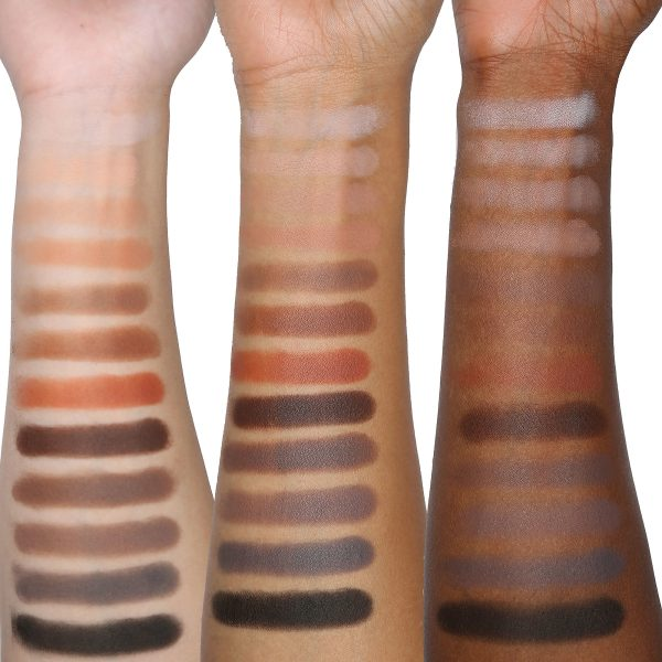 VISEART Neutral Mattes Eyeshadow Palette Swatches