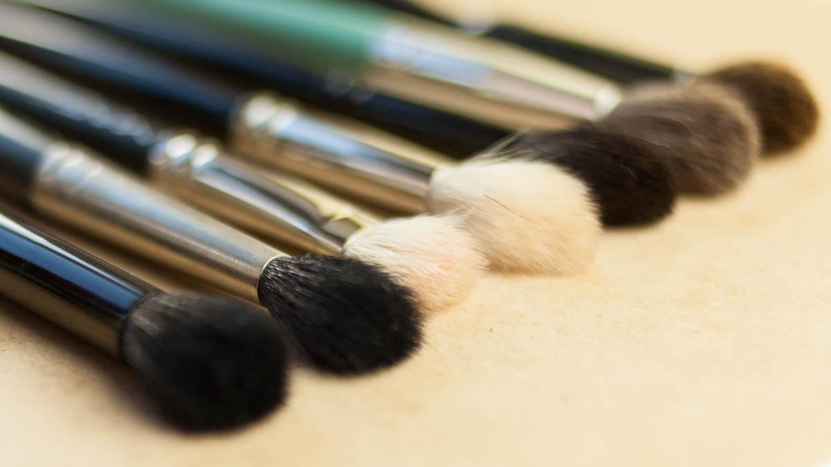 Bester Blendepinsel Blnding Brushes Vergleich japanisch