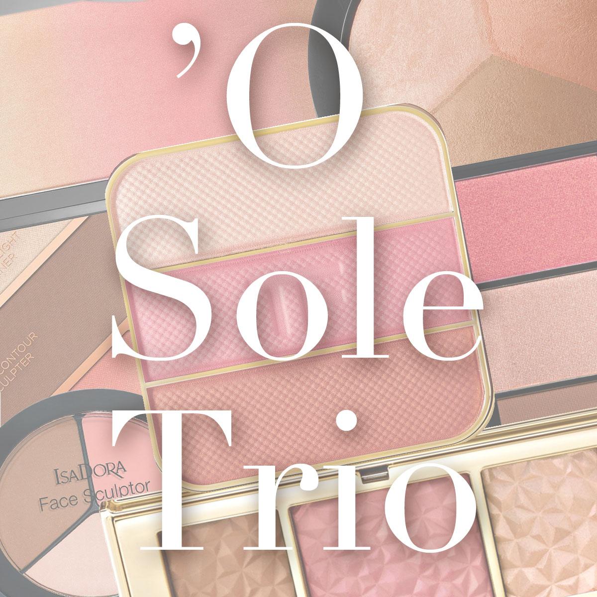 Blush Bronzer Highlighter Palette Trio