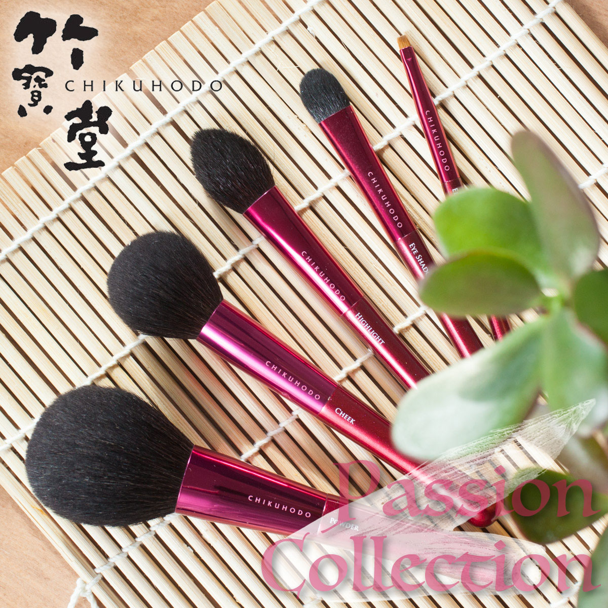 CHIKUHODO Passion Brush Collection Pinsel