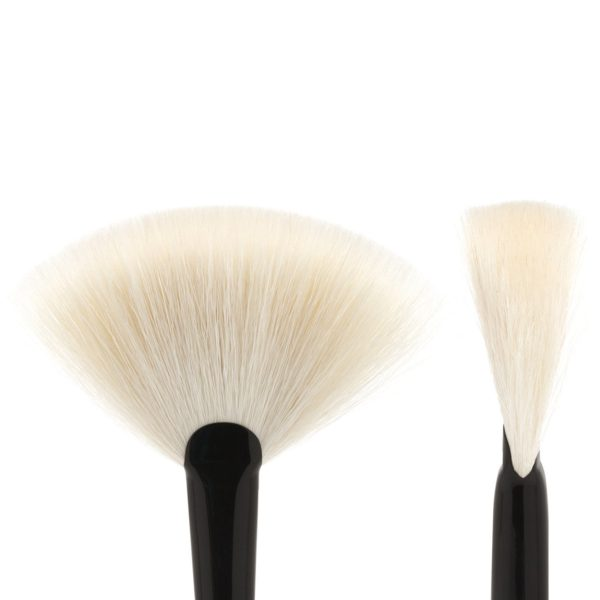 WAYNE GOSS Brush 15 Fan Brush Detail