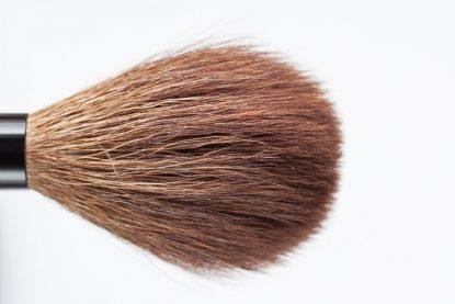 Wayne Goss 14 Brush Blush Rouge Broom Head Pinsel Kopf