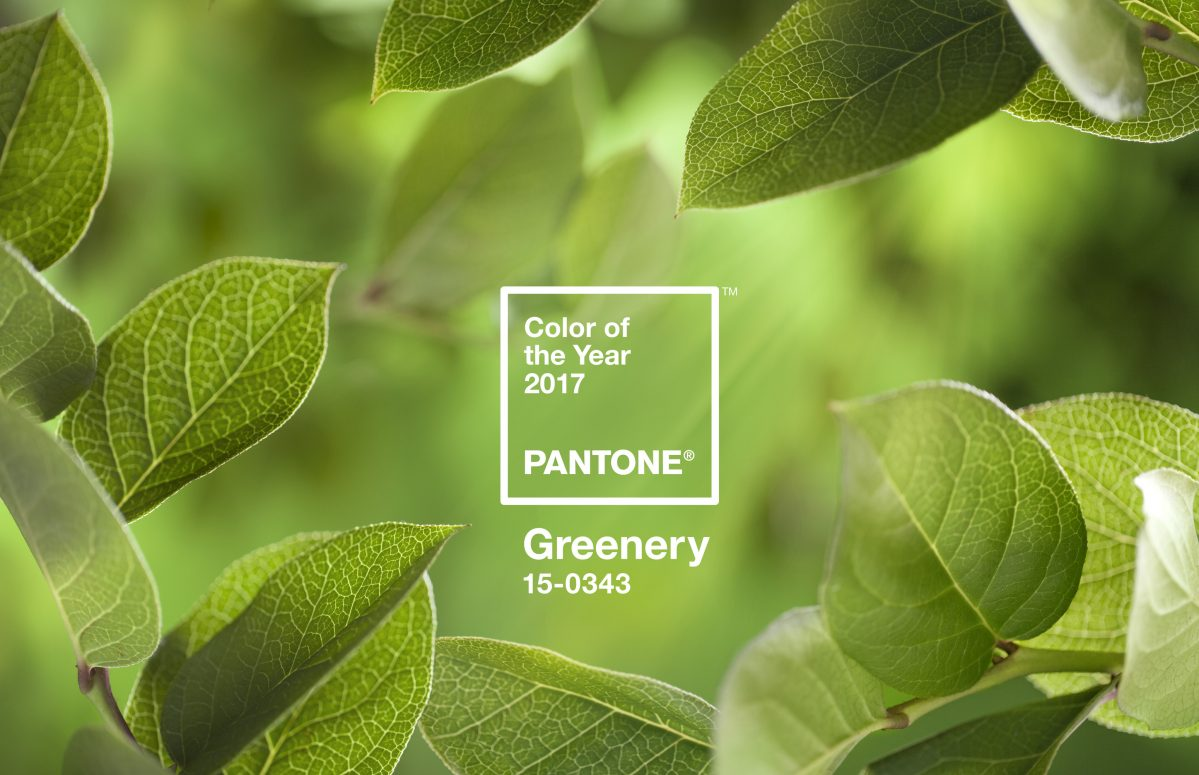 PANTONE Colour of the Year 2017 Greenery Ambient