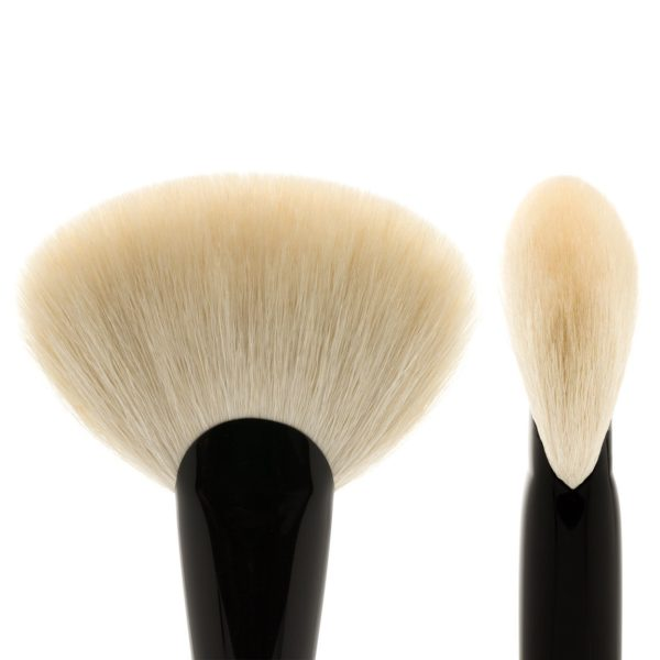 SONIA G Sculpt One Fan Brush Bristles Shape