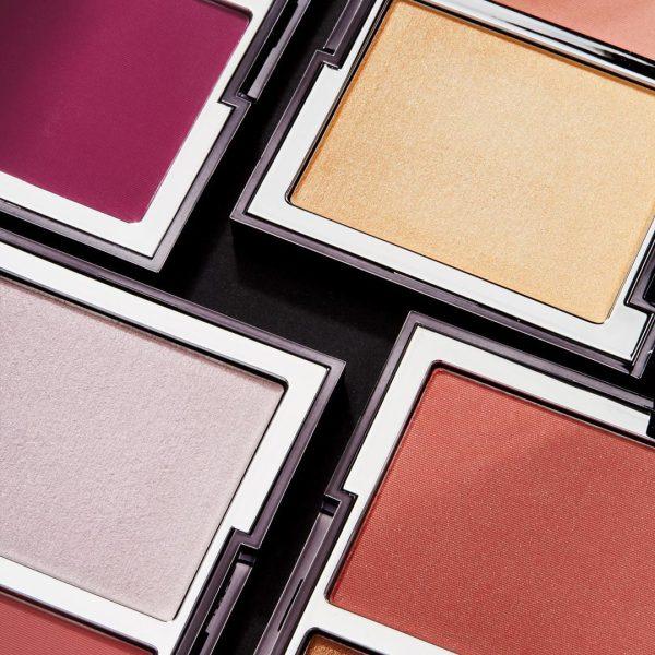 WAYNE GOSS The Weightless Veil Blush Palette Closeup