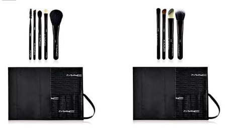 MAC Look in a Box Brush Sets